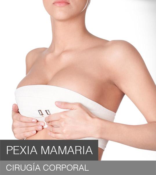 procedimientos-pexia